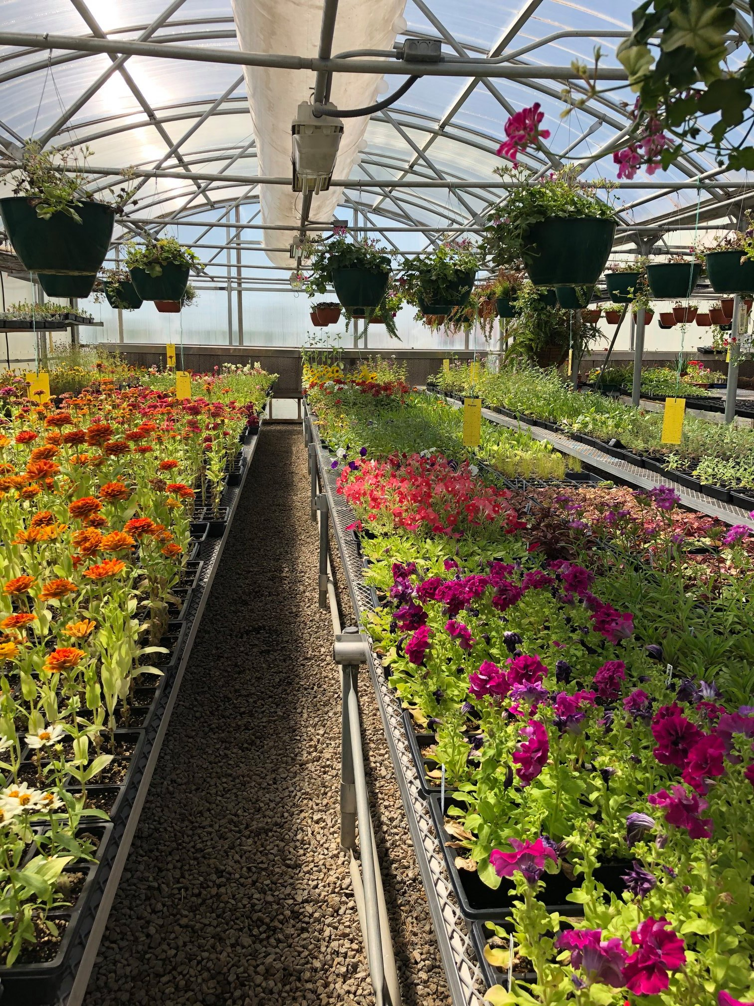 Topeka Correctional Facility to Hold Annual Plant Sale